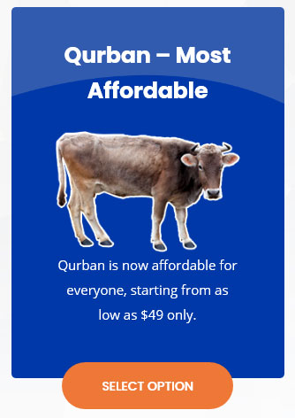 Qurban, Aqiqah & Waqaf for Muslim around the world by BNiaga