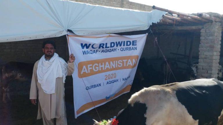 Qurban Afghanistan 2020