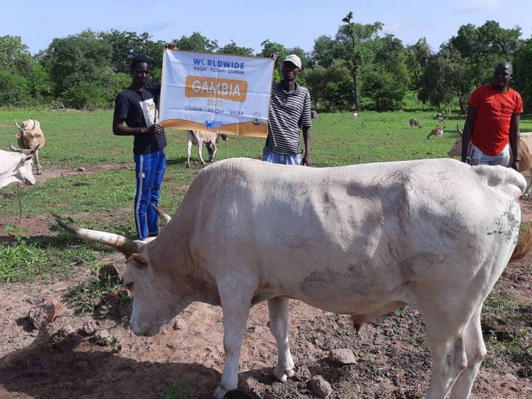 Qurban Gambia 2020