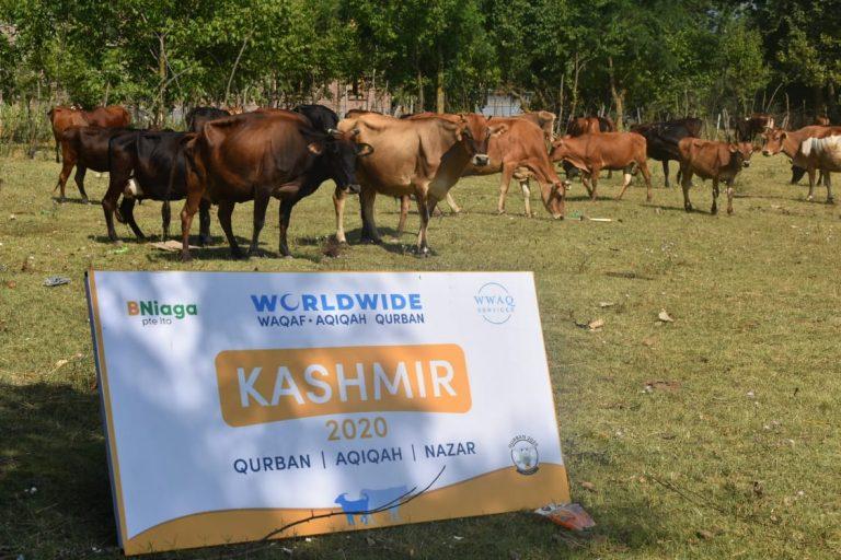 Qurban Kashmir 2020