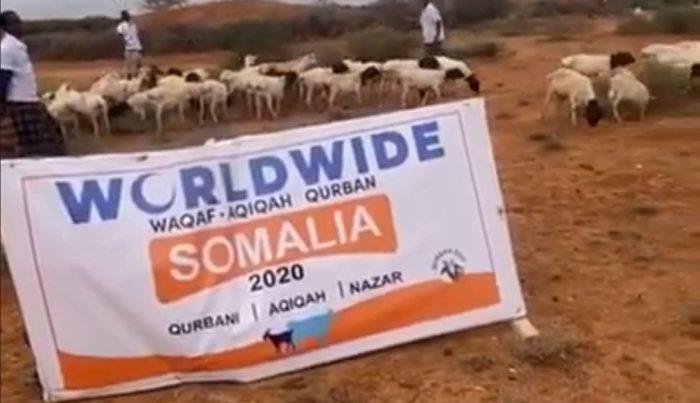 Qurban Somalia 2020